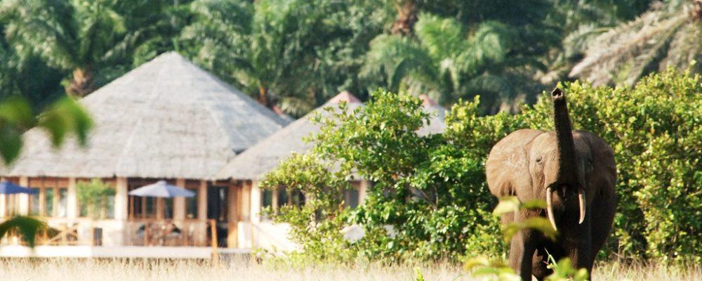 Loango Lodge Foto: AE_Rombout