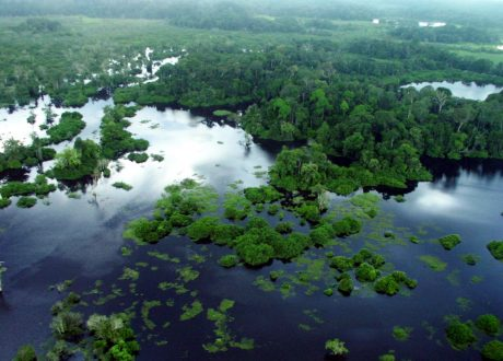 Loango
