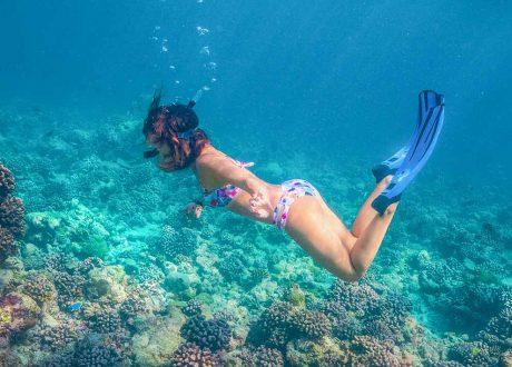 Amaya Kuda Rah Snorkeling