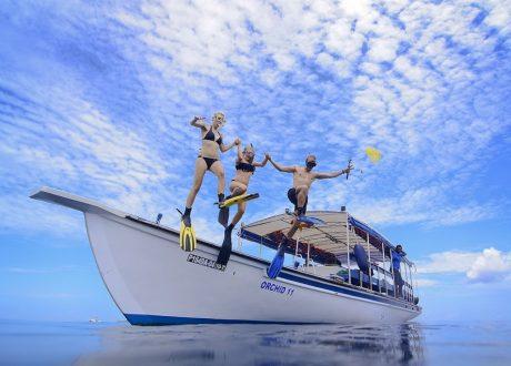 Bandos snorkeling