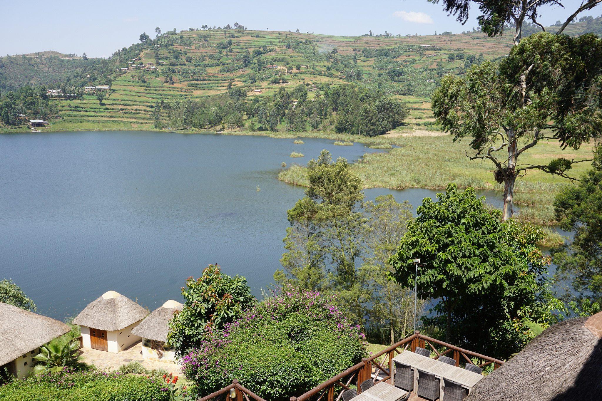 Birdnest @ Bunyonyi Resort
