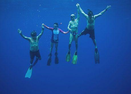 Blauwe Vinvis Expeditie