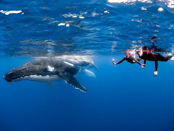Tonga, Oceanië