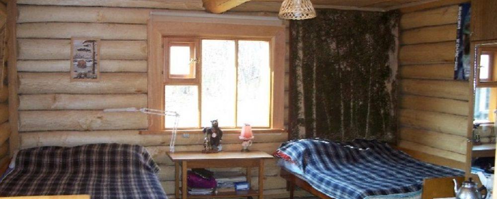 Siberian Tiger Lodge