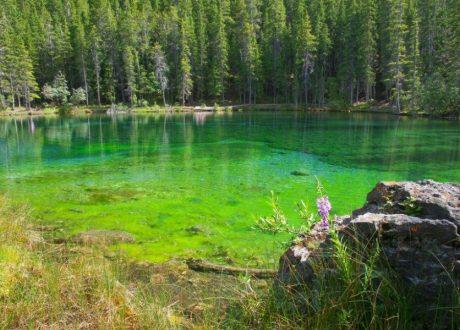 Grassi Lake, Banff, Canada