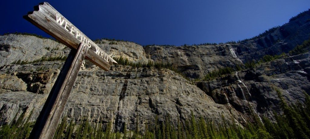 Weeping Wall, Icefields Parkway, Canada