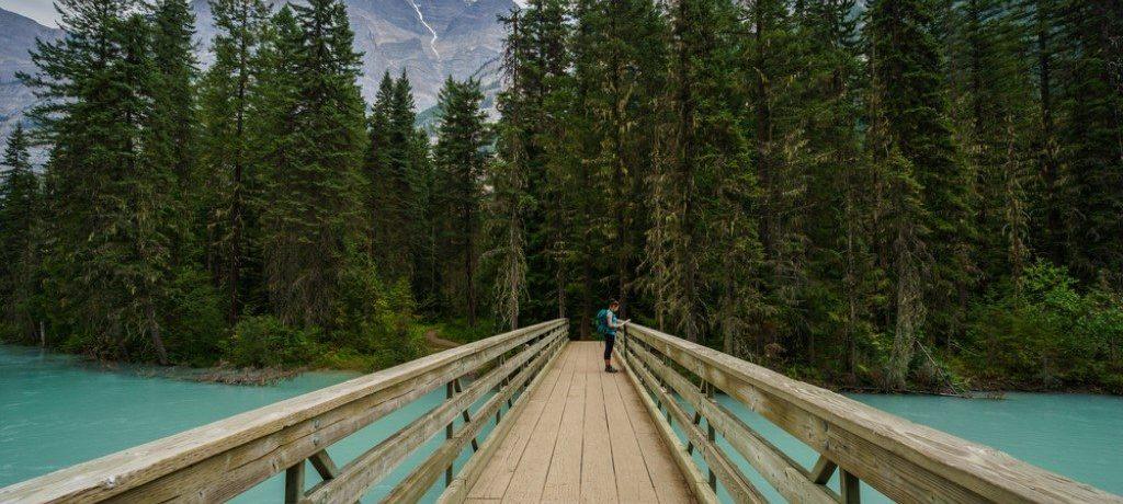 Berg Lake Trail, Mount Robson, Canada