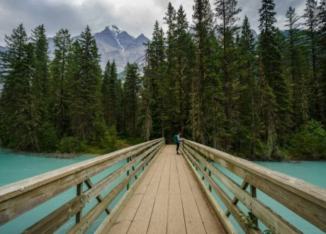 Berg Lake Trail, Mount Robson, Canada
