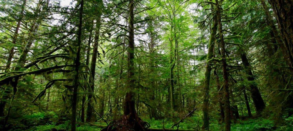 Tweedsmuir, Canada