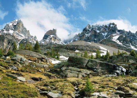 Opabin Plateau, Yoho, Canada