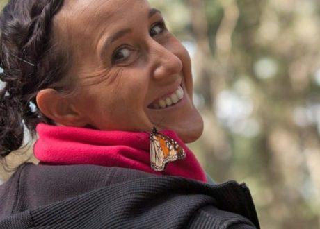 Chincua Butterfly Sanctuary - Court Whelan