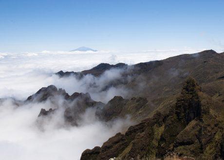 Kilimanjaro Shira