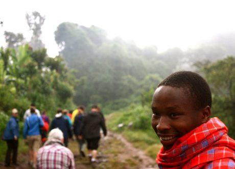 Kilimanjaro regenwoud