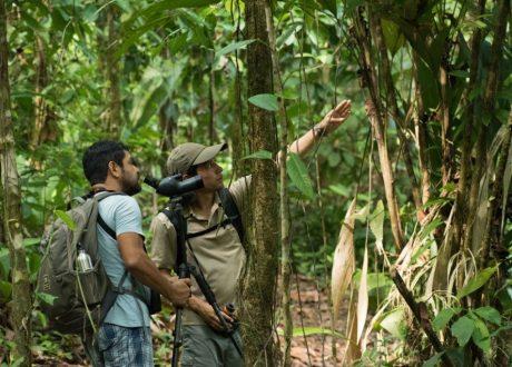 Costa Rica Adventure © Cathy Drexler