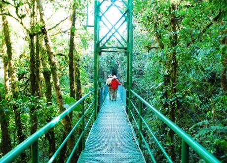Costa Rica © Megan Koelemay NH