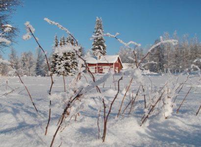 Beste reistijd voor FInland, Sneeuwschoentrekking Hossa