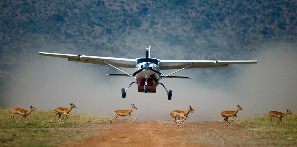 Fly in Kenia & Tanzania, Fly in safari reizen