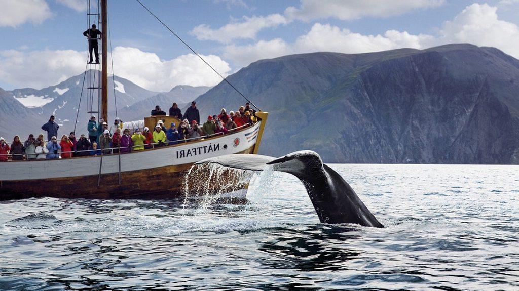 IJsland rondreizen op maat