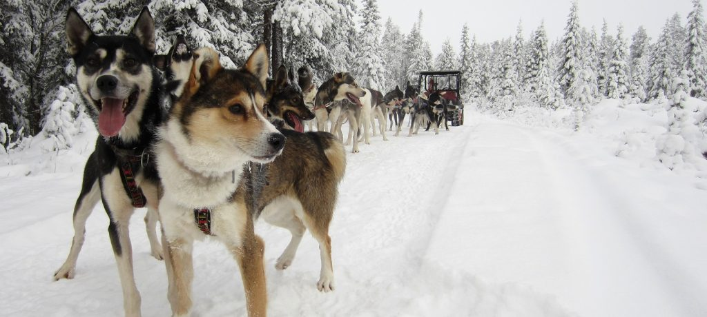 Finland Foto: © Äkäskero