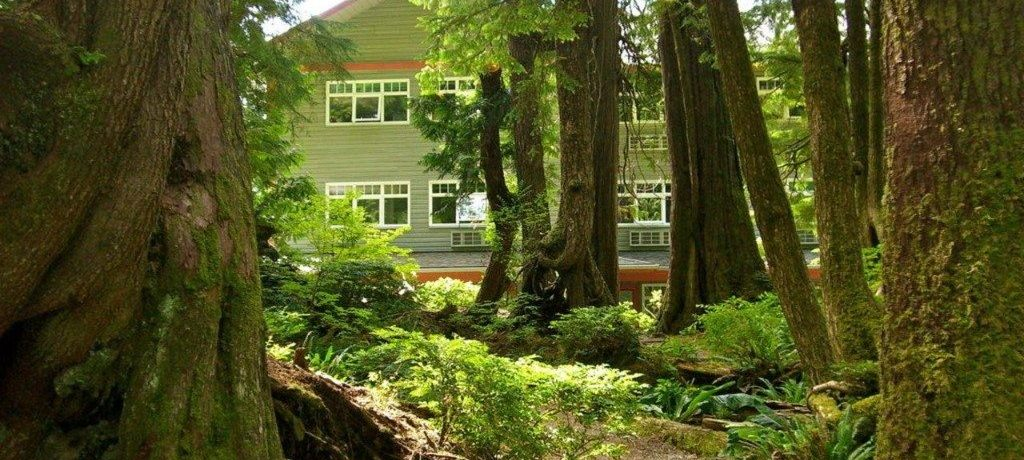 Jamie's Rainforest Inn