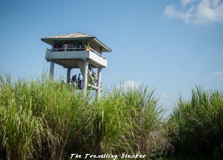 Foto: © thetravellingslacker.com