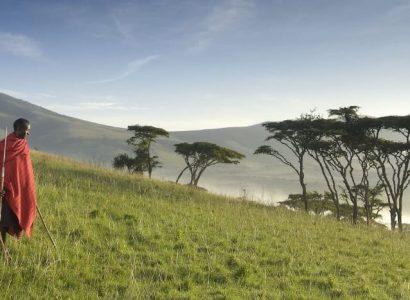 Kirurumu Ngorongoro