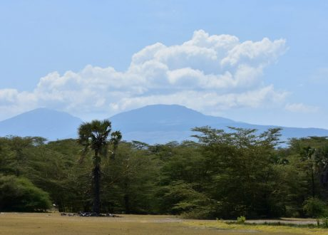 Foto: © Richard Mortel