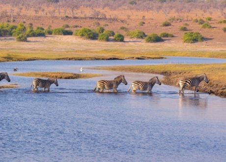 Lake Ndutu Serengeti