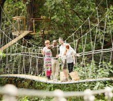 Manyara - Treetop Walkway - Wayo