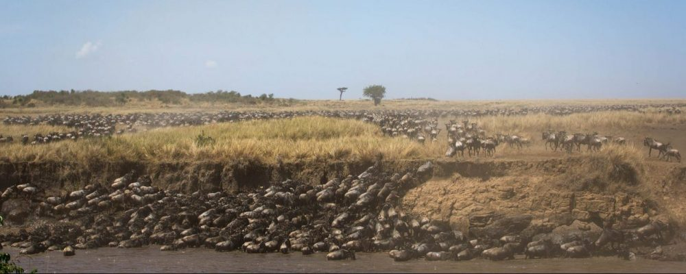 Foto: © Make it Kenya