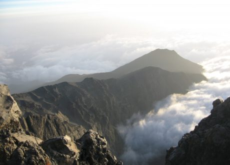 Foto: © Woodlouse