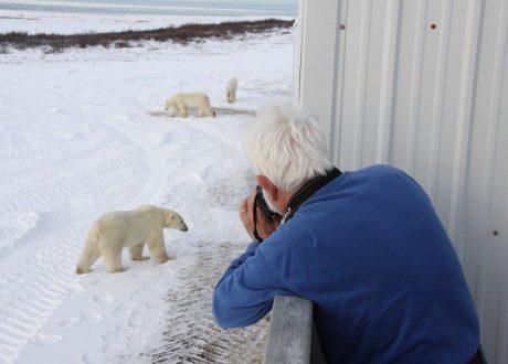 Foto: Alek Komarnitsky © Natural Habitat Adventures