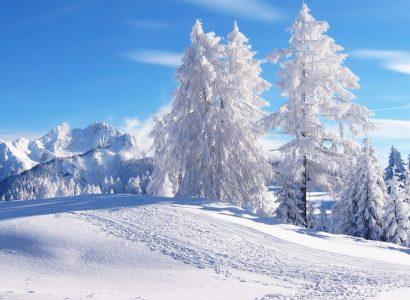 Beste reistijd voor Lapland