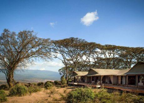 Nomad Entamsnu Ngorongoro