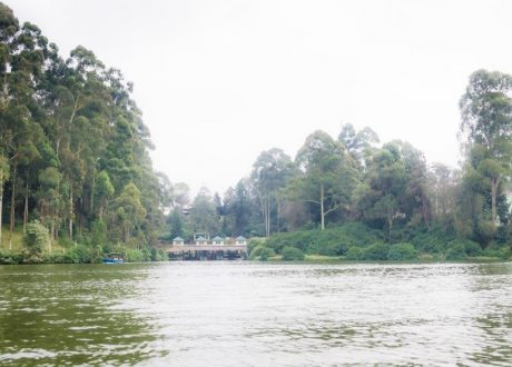 Ooty lake - Ashwin Kumar