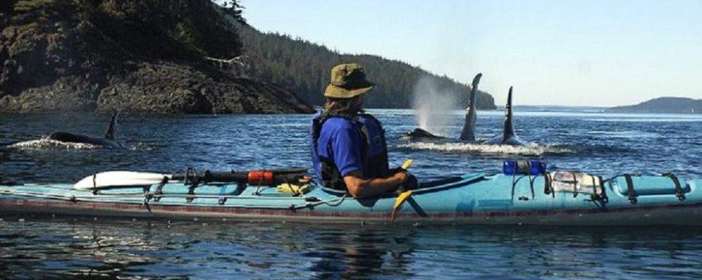 Orca Camp MC Neill