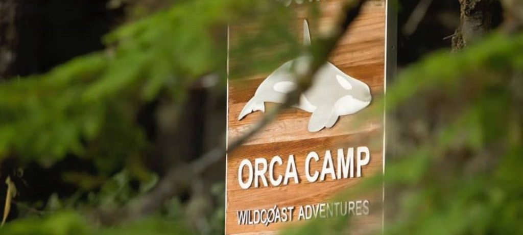 Orca Camp Wildcoast