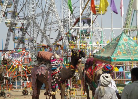 Festival in Pushkar. Foto: © T.L. Thompson