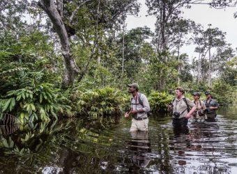 REP CONGO_Odzala Discovery Camps_ODC adventure walks between camps Scott Ramsay