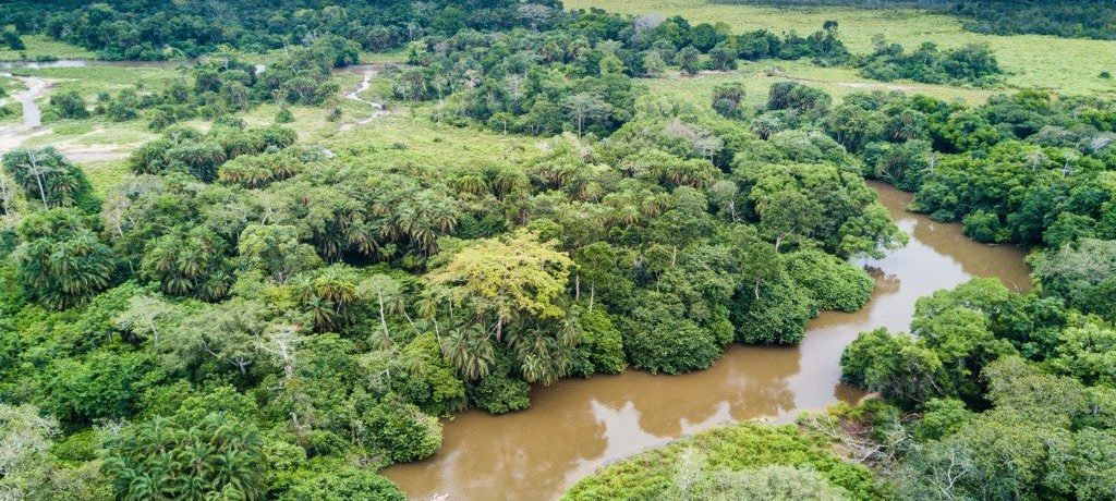 REP CONGO_Odzala Discovery Camps_ODC