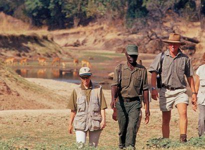 Robin Pope Walksafari