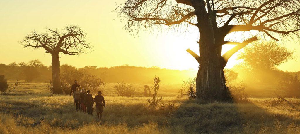 Foto: © Kichaka Expeditions