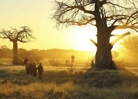 Foto: © Kichaka Expeditions