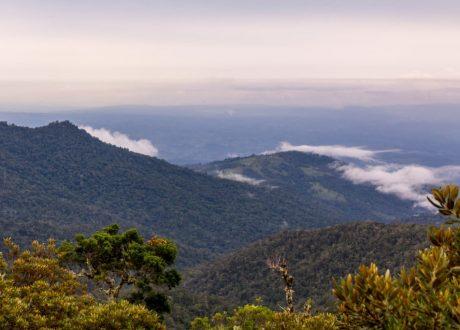 Talamanca Mountain
