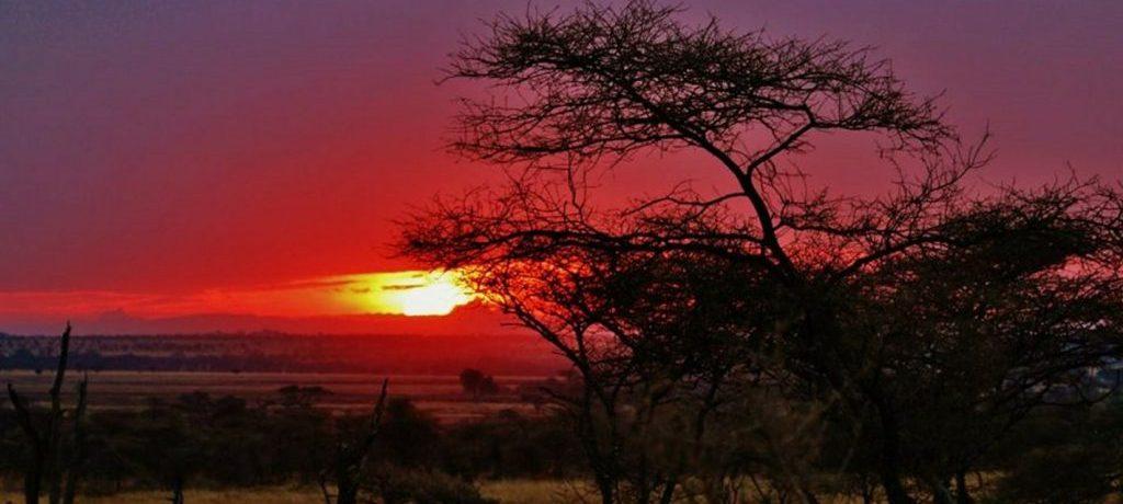 Serengeti-sundown-e1476442128658