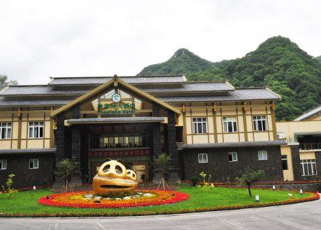 Wild Panda Reserve Hotel