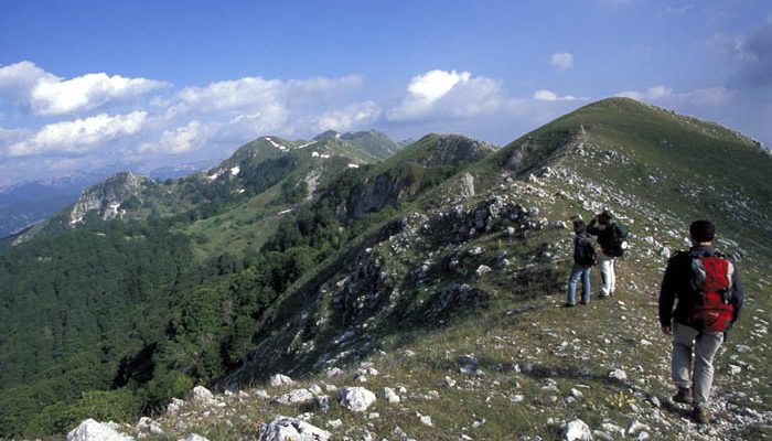 Abruzzen National Park