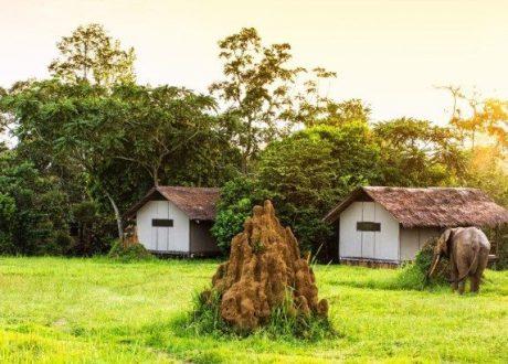 mboko-camp-12718