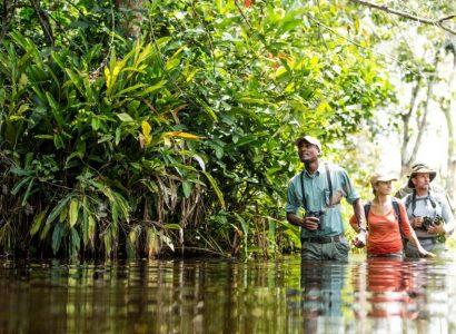 Natuurreizen naar tropische regenwouden