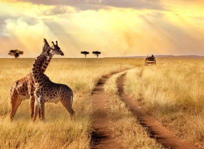Klimaat Kenia - Tanzania